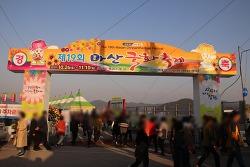 제 19회 마산국화축제 오색 국화향기 가을바다 물들이다.