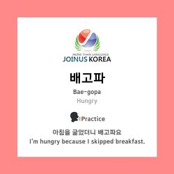 [Korean Class] What is your favorite Korean lunch menu?