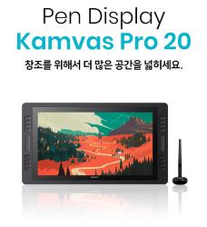[액정 타블렛] 휴이온 - KAMVAS PRO 20 구입