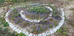 [행복찾기] 봄 소식을 전하는 아름다운 꽃