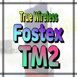 커스텀이 가능한 블루투스 이어폰 FOSTEX TM2 - True Wireless Bluetooth Stereo Earphone - 1910C