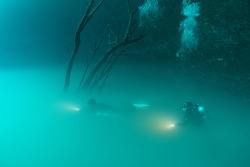 뚤룸한달살기/ 20190709 앙헬리따 Angelita cenote 다이빙