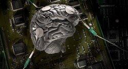 게놈 이후 최대 과학혁명, 커넥톰