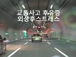 [교통사고]외상후 스트레스 장해