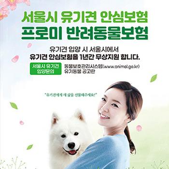DB손해보험, 서울시와 손잡고 유기견 입양 시 1년간 보험 지원!