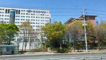 창원 파티마병원 건강검진 후기(장단점)