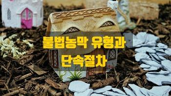 불법농막 유형과 불법농막에 대한 처벌내용