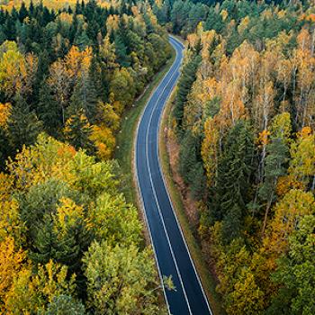 도로 위에서 느끼는 가을, 가을 국도 드라이브 코스 추천 5