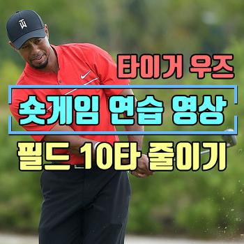 타이거 우즈 숏게임 연습 영상(그린주변어프로치/벙커샷/로브샷) 필드에서 10타 줄이는 연습방법 /Tiger Woods Short Game Practice