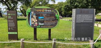맥문동꽃이 활짝 핀 성주성밖숲