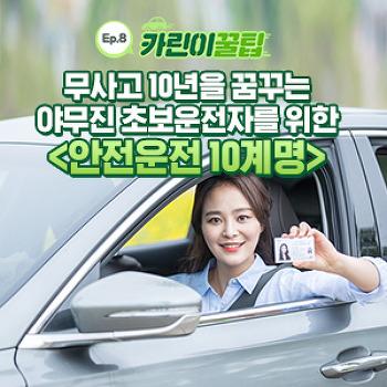 [카린이 꿀팁] 무사고 10년을 꿈꾸는 야무진 초보운전자를 위한 안전운전 10계명!