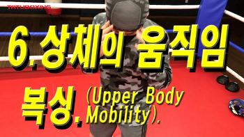 6. 상체의 움직임(Upper Body Mobility)_복싱_타투복싱