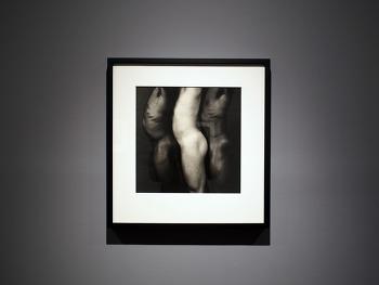 로버트 메이플소프 사진전 - 국제갤러리
