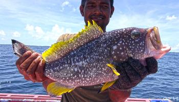색다른 물고기를 낚고 싶다면? 해외 원정낚시 1편(아시아편)