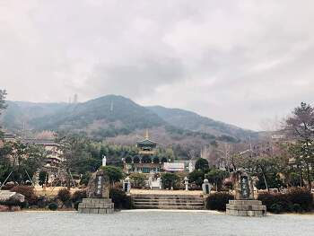 금련사 연말연시 법회, 서울법회,  불교아카데미 안내 공지