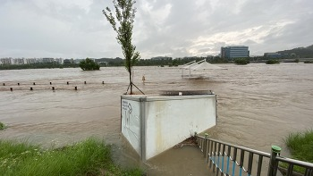 대전 갑천 홍수