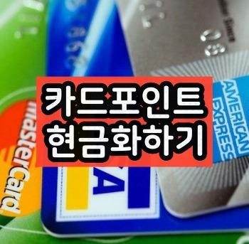 카드포인트 현금화하기 통합조회 한번에 가능