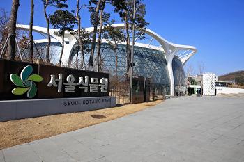 추울 때에는 온실이 최고다(서울식물원 열대관)/20210217