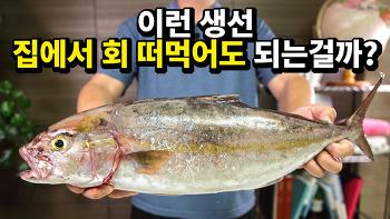 이 맛있는 생선을 의외로 사람들이 잘 몰라요.