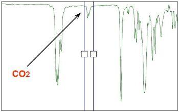 Accelerator의 빠른 Gel화