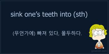 영어 표현 : sink one's teeth into (something) - (무언가에) 빠져 있다, 몰두하다