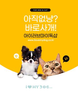 경기도, 주형 및 금형, 금형사출, 제조업체, 주소록 : 500-1000    Gyeonggi-do, mold and mold, mold injection, manufacturer, address book,