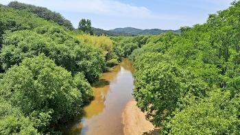 늪으로 가는 생태여행 (4) 남강댐의 습지
