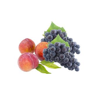 <건강플러스> 건강하려면 보라색과 친해져라! 환절기 건강 지키는보라색 식재료들