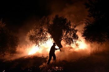 지구촌 대형 산불