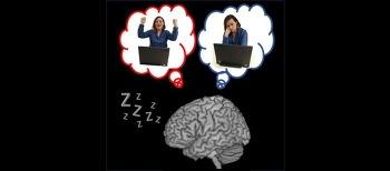 """잠잘 때 뇌 들여다보니…""""뇌 영역간 소통하며 기억 강화"""""""