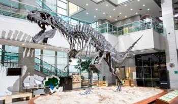 서울 공룡박물관, 아이들 나들이 추천, 서대문자연사박물관