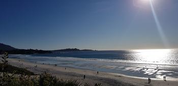 몬트레이(Monterey)에서 푸른바다를 만나다