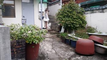 한국 25_어떤 마당