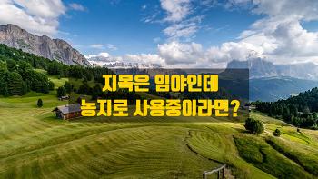 지목은 임야인데 농지로 사용하고 있다면 임야일까요? 농지일까요?