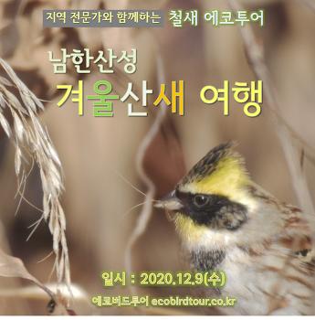 남한산성 겨울산새 여행 (12월9일,수)