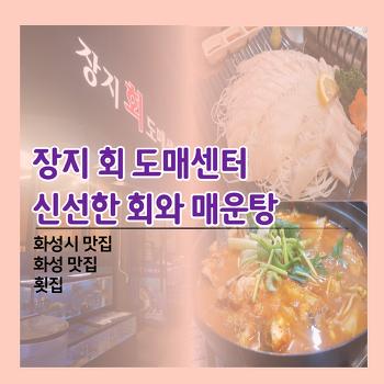 (경기 화성 맛집) 장지 회 도매센터 신선한 회와 매운탕(화성시 맛집, 화성 맛집, 횟집)