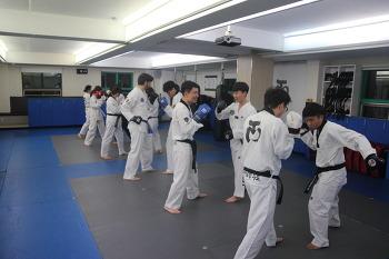 [태권도장 무토] 성인부 수련사진