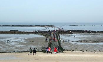 1.5km 신비의 바닷길이 열린다 '무창포해수욕장'