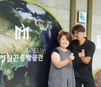 【SEESAW】 미래식량 '벅스푸드', 강원도 선두주자를 소개합니다 ②