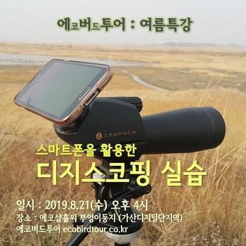 여름특강2 : 스마트폰을 활용한 디지스코핑 실습