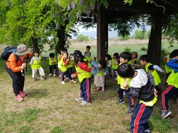 홍광유치원  솔방죽생태공원 체험