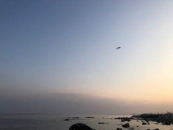 영덕 동해바다