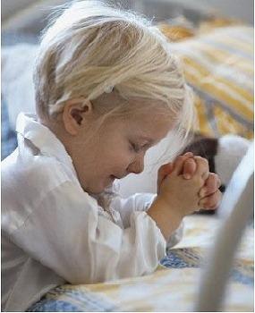 코로나 19로 인한 기도회 일정 공지