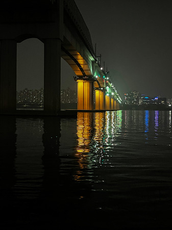 201210 _ 산책 (아이폰12프로맥스 사진)