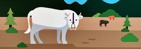 흰 소의 해? 2021년 바로 알기 전시회 '신축년 반갑소'