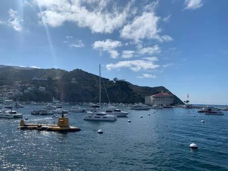 카탈리나 섬 당일치기 (호텔 무박 + 절약) - Catalina Island 미국 서부 여행