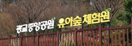 식목일 맞이 광교 가볼 만한 곳! '광교중앙공원 유아숲체험원'