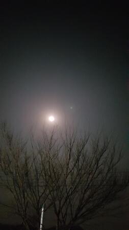 봄,밤!!!!