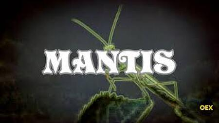 """[무료비트] 음흉하고 무서운 느낌의 트랩 비트 """"MANTIS"""""""