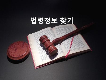 사고유형에 따른 법령정보